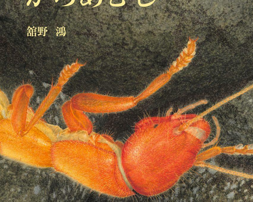 取材10年 舘野鴻さんが描き上げた絵本『がろあむし』が刊行。暗黒世界に棲む虫の美しい一生とは?